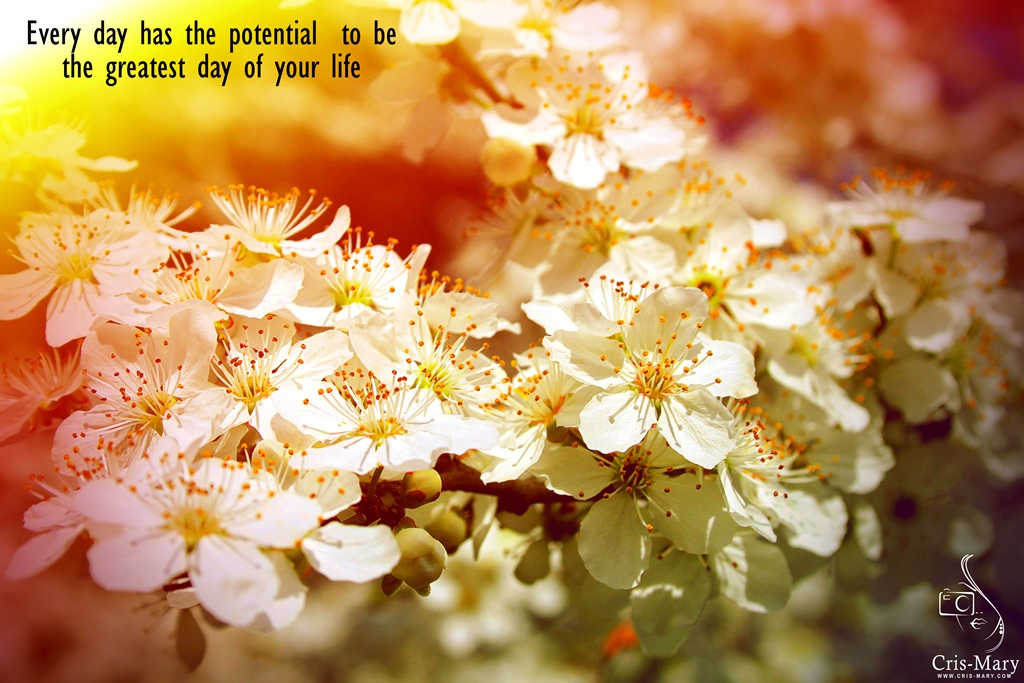 Every day has the potential to be the greatest day of your life! - Copy